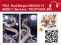 02_Dragon_MB_320